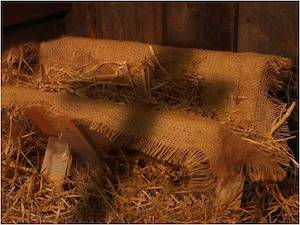 The Manger and the Cross